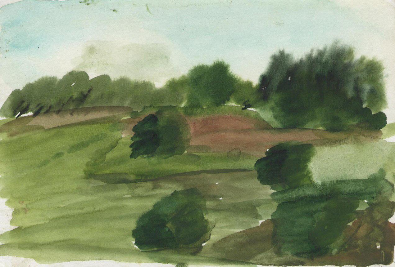 поле около дачи
