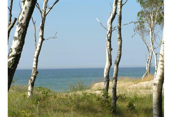 Балтийское море, Куршская коса