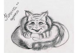 Кошка-шляпа