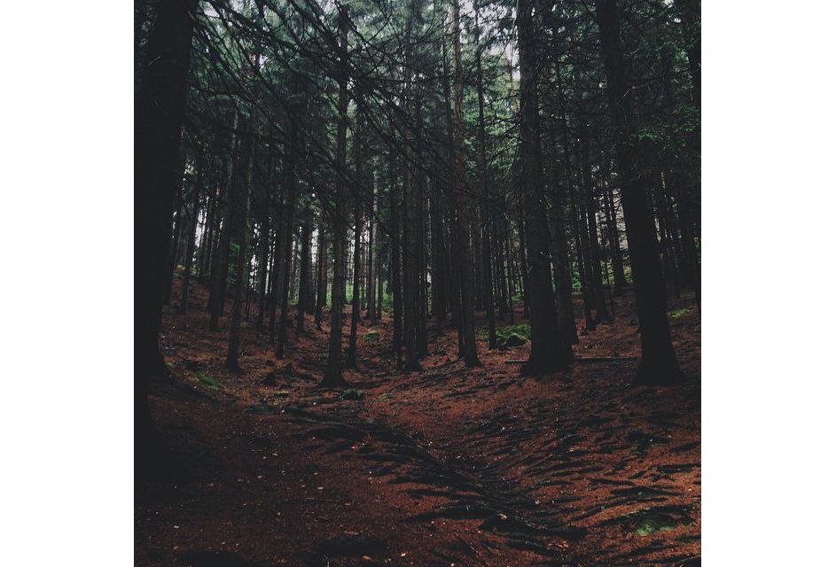 Когда покров земного чувства снят