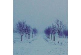 Буддийская зима