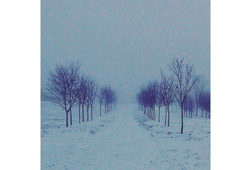 фото к рассказу Буддийская зима