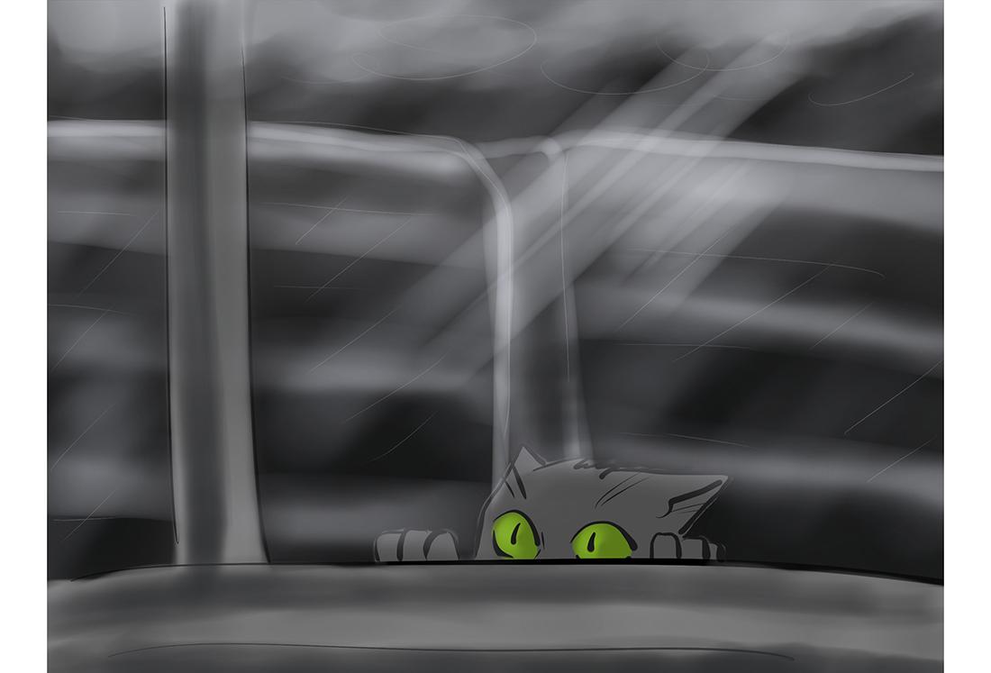 рисунок черный котенок у окна