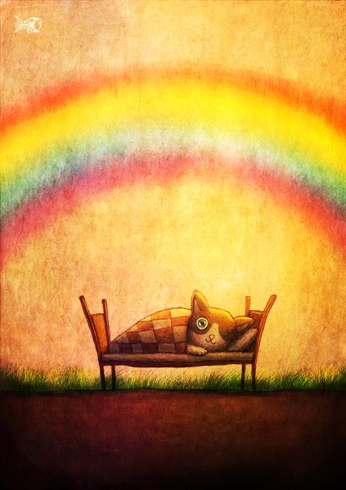 кот и радуга