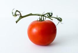 Астраханский помидор